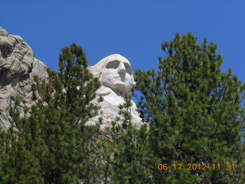 George Washington Through Pines