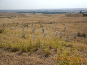 Custer and Men, June 25, 1876: marked where they died.