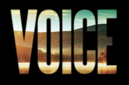Voice (Graphic © 2015, F. P. Dorchak and Lon Kirschner)