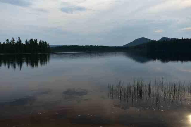 Barnum Pond (© F. P. Dorchak, August 10, 2017)