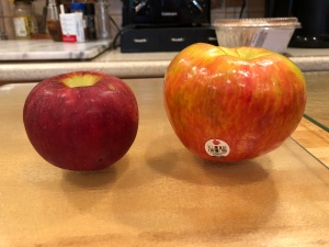 Would The Real Honeycrisp Please Stand Up? (Image © 2018 F. P. Dorchak)