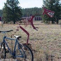 "Lake George ""Bike Fence"" Monster (© F. P. Dorchak 2020)"