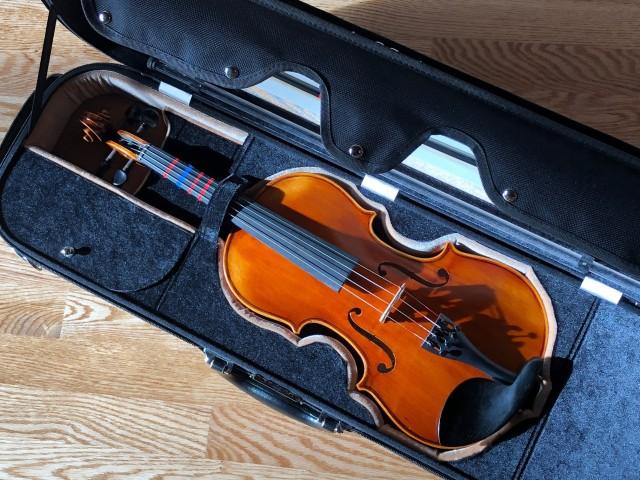 The Instrument. (Image © 2021 F. P. Dorchak)