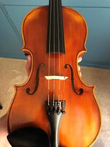 Violins! (© June 5, 2021, F. P. Dorchak)