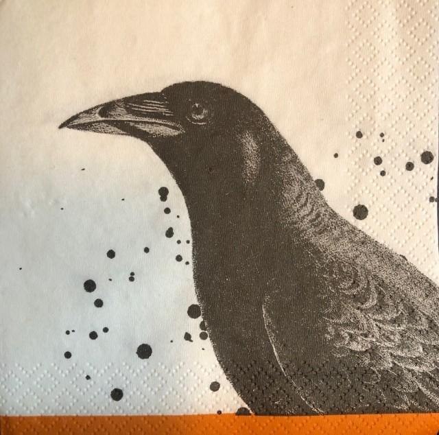 """""""The Raven"""" (Image © F. P. Dorchak, 2021)"""